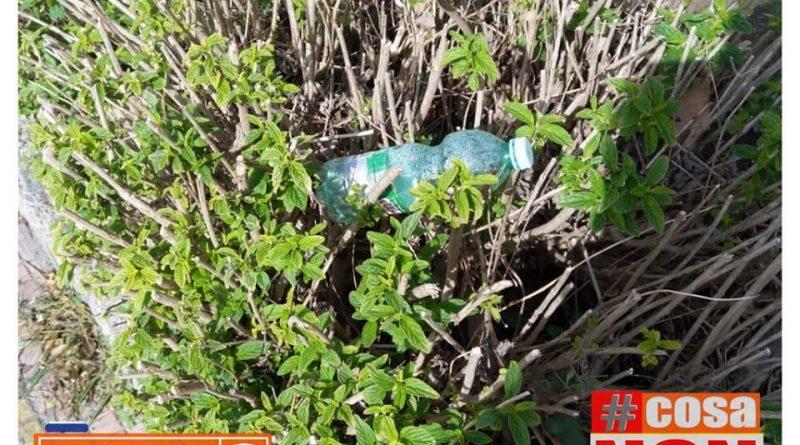 fiori di plastica #cosaNonVa.it Pasquale Valiante inquinamento