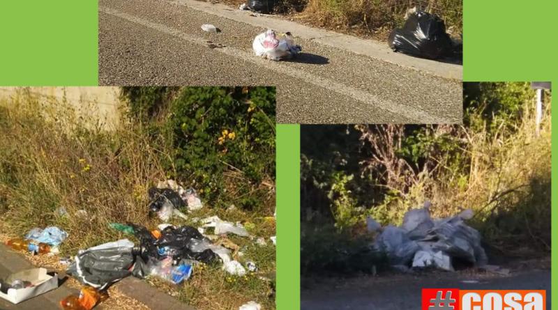 fotononva le segnalazioni fotografiche di cosanonva degrado rifiuti abbandonati ad aprimia ma ovunque